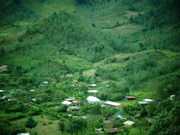 Cocop, Guatemalan genocide, survivors, indigenous